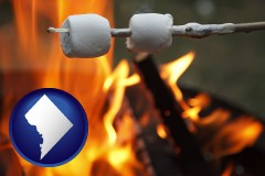 Washington, DC - roasting marshmallows on a camp fire