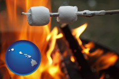 Hawaii - roasting marshmallows on a camp fire