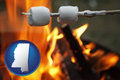 Mississippi - roasting marshmallows on a camp fire