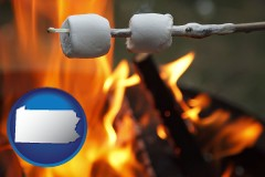 Pennsylvania - roasting marshmallows on a camp fire