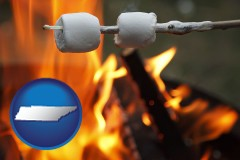 Tennessee - roasting marshmallows on a camp fire